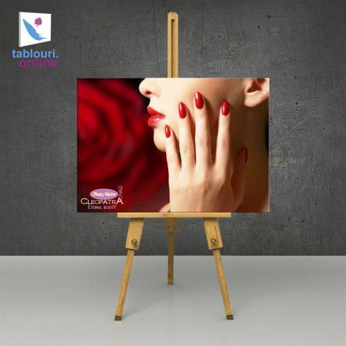 Tablou centru beauty & spa 70 x 100 cm