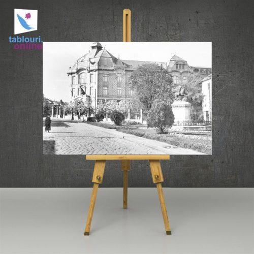 Tablou alb-negru 80 x 120 cm